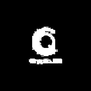 NS_WC_CryptoIQ_logo